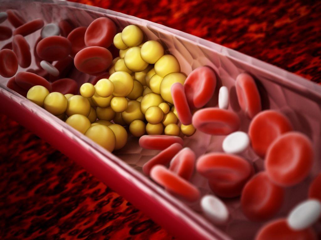 Integratori colesterolo