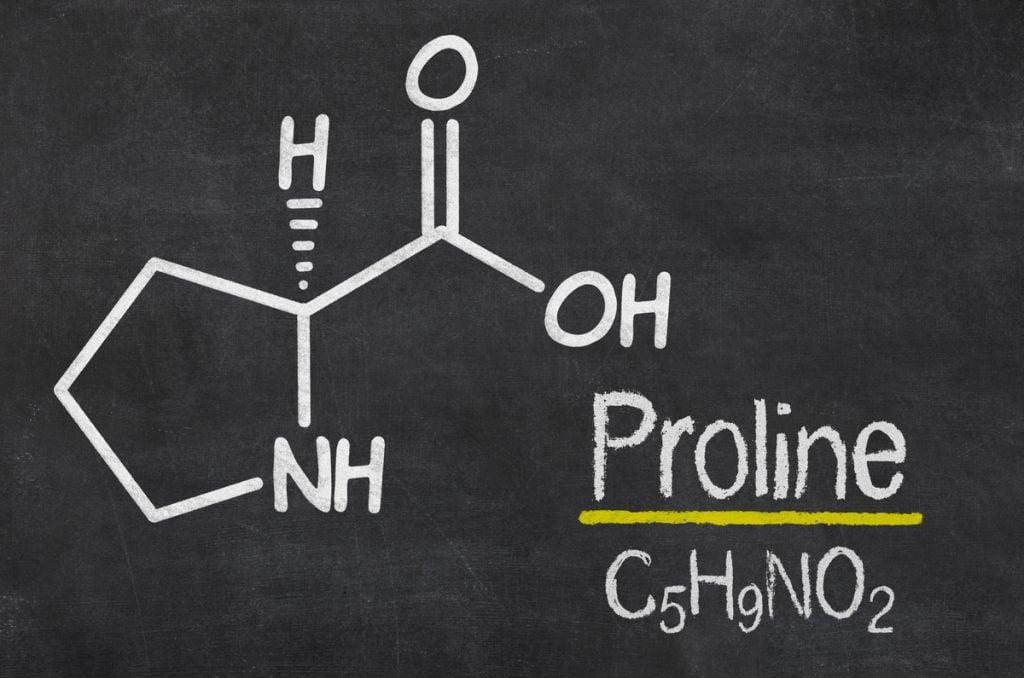 Prolina - l-prolina