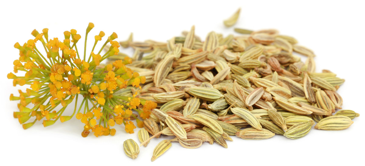 semi di finocchio