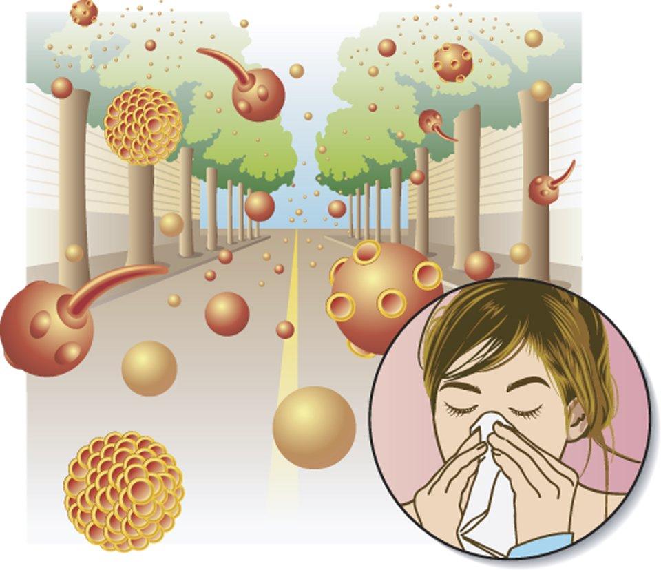 dieta per le allergia ai pollini