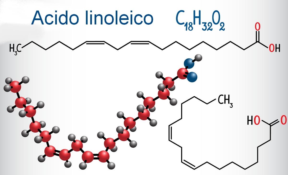 Acido linoleico - Acidi grassi essenziali